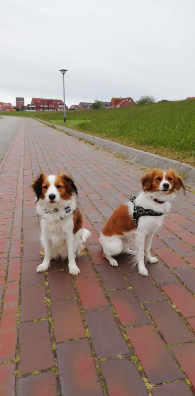 Ayla und oLtta